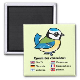 Blue Tit International 2 Inch Square Magnet