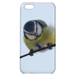 Blue tit on a branch cover for iPhone 5C