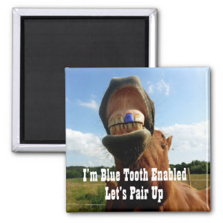 Blue Tooth Enabled Horse Magnet