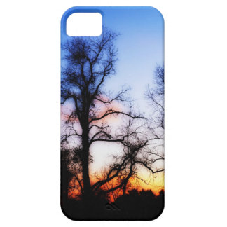 Blue Trees iPhone 5 Covers