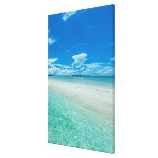 Blue tropical seascape, Palau Canvas Print