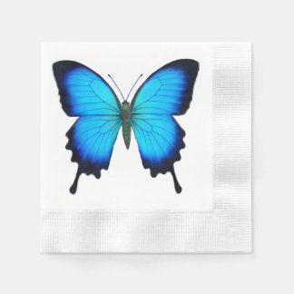 Blue Ulysses Butterfly Paper Napkins