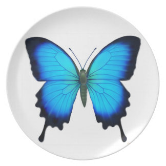 Blue Ulysses Butterfly Plate
