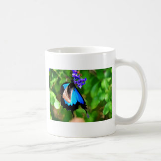 BLUE ULYSSES BUTTERFLY QUEENSLAND AUSTRALIA COFFEE MUG