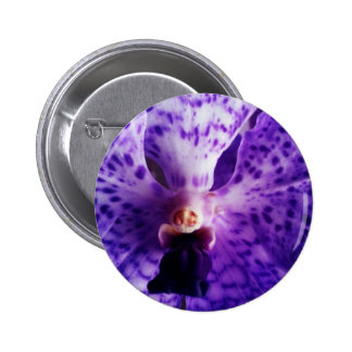 Blue Vanda Orchid Buttons