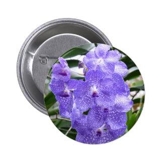 Blue Vanda Orchid Flowers Pins