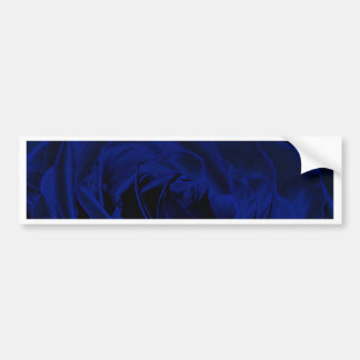 Blue Velvet rose.jpg Bumper Sticker