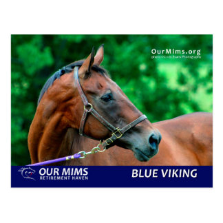 Blue Viking postcard
