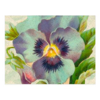 Blue Vintage Pansy Watercolor Postcard