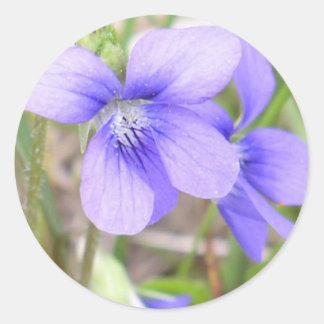 Blue Violet Flower Classic Round Sticker