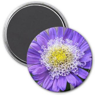 blue violet flower magnet