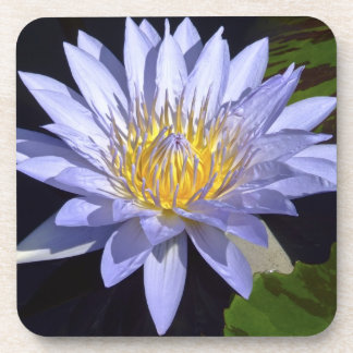 Blue Water Lily Coasters