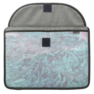 blue water plants under pond water sleeve for MacBook pro