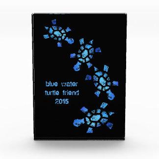 Blue Water Turtle Friend Award