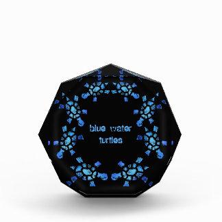 Blue Water Turtles Award