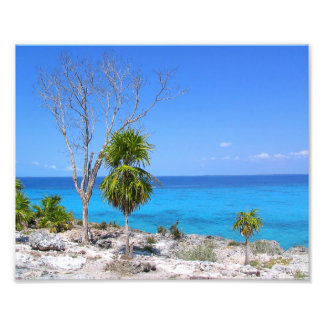 Blue Waters at the Bay of Pigs Photo