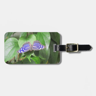 Blue Wave Butterfly Bag Tag