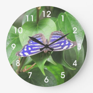 Blue Wave Butterfly Large Clock