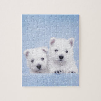 Blue westies jigsaw puzzle