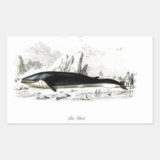 Blue Whale #8 Whaling scene Gift for him Rectangular Sticker