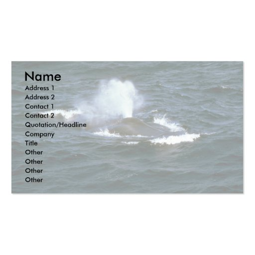 Blue whale Double-Sided standard business cards (Pack of 100)