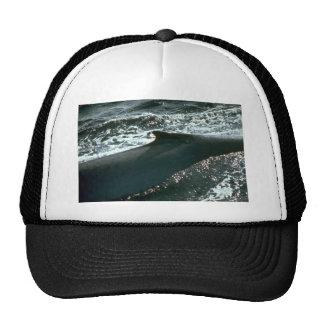 Blue whale, dorsal fin trucker hat
