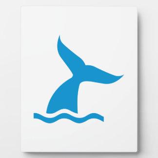 Blue whale fin plaques