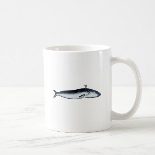 Blue Whale Illustration (spouting) Mugs