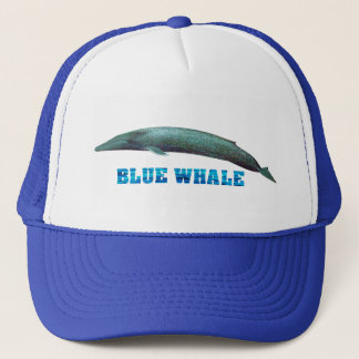 Blue Whale image for Trucker-Hat Trucker Hat