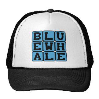 Blue Whale, Marine Mammal Hat