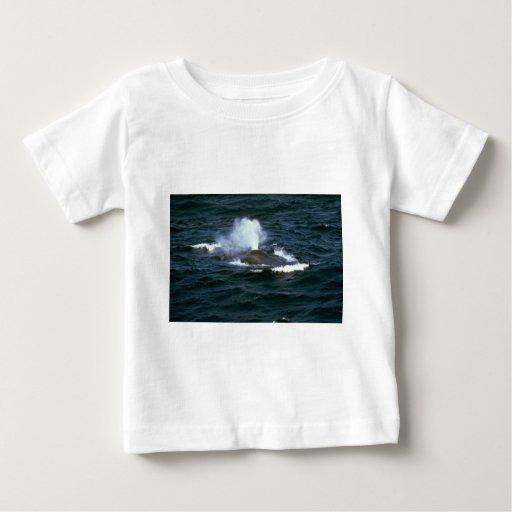 Blue whale tees