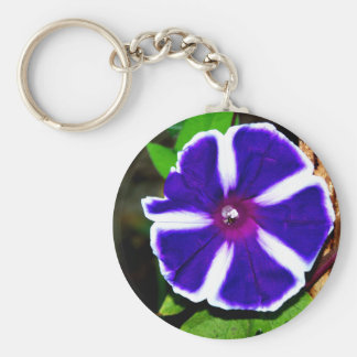 Blue, White and Purple Morning Glory Key Chains