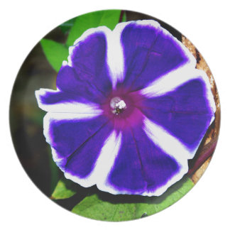 Blue, White and Purple Morning Glory Melamine Plate