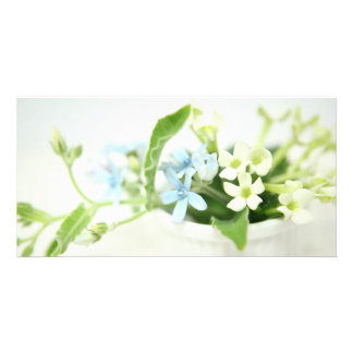 Blue & White flower cards. Customized Photo Card