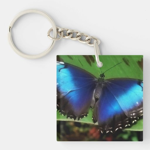 Blue Wing Butterfly Acrylic Keychain