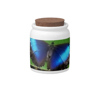 Blue Wing Butterfly Candy Jar