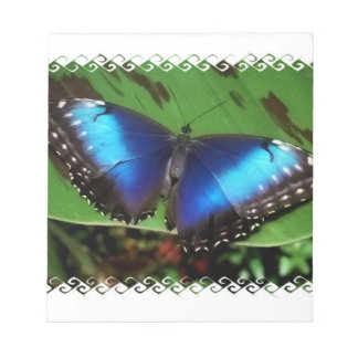 Blue Wing Butterfly Notepad