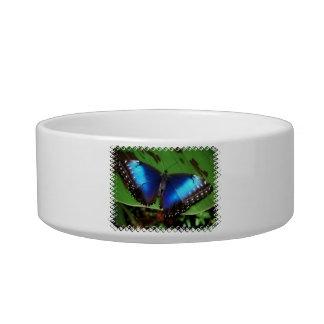 Blue Wing Butterfly Pet Bowl