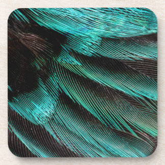 Blue Wing Covert feathers Coaster