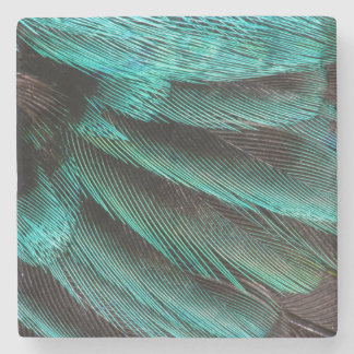 Blue Wing Covert feathers Stone Coaster