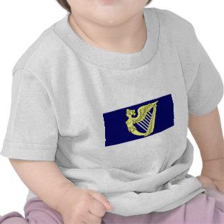 Blue Winged Maiden Harp, Ireland flag T-shirts