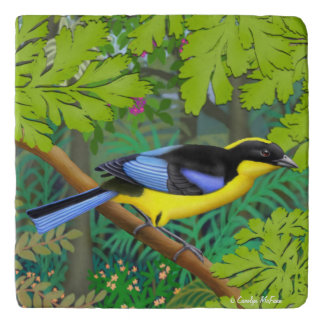 Blue Winged Mountain Tanager Stone Trivet