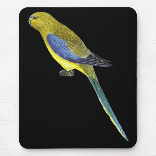 Blue-winged Parrot - Neophema chrysostoma Mouse Pad