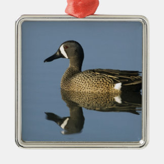 Blue-winged Teal, Anas discors,male, Port Metal Ornament