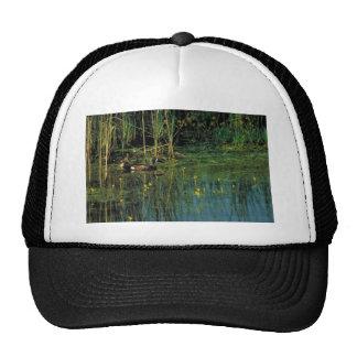 Blue-winged teal trucker hat