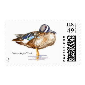 Blue-winged Teal Stamps