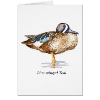 Blue-winged Teal Stationery Note Card
