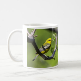 Blue-winged Warbler Coffee Mug