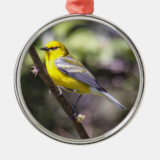 Blue-winged Warbler Metal Ornament