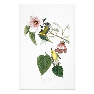 Blue-winged Yellow Warbler Audubon Birds America Stationery